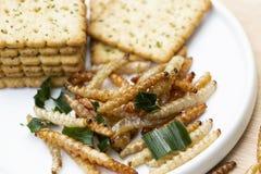 Bambus- essbare Wurminsekten knusperig oder Bambus-Caterpillar mit Pl?tzchen im keramischen Teller Das Konzept von Proteinnahrung lizenzfreie stockbilder