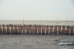 Bambus für schützen zurückhaltenden und der Weinlese Effekt der Sumpfgebiete, Lizenzfreies Stockbild