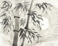 Bambus i księżyc ilustracja wektor