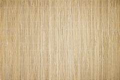 Bambus mata Obraz Royalty Free