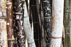 Bambus mit Carvings lizenzfreies stockfoto