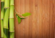 Bambus rama robić trzony Zdjęcia Royalty Free