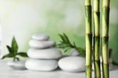 Bambus rozgałęzia się przeciw zamazanym zdrojów kamieniom na stole zdjęcia stock