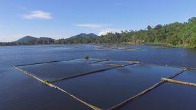 Bambus struktury budować po środku halnego jeziora Truteń antena zdjęcie wideo