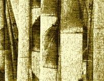 bambus tło ilustracja wektor