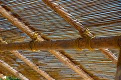 bambus tło obraz stock