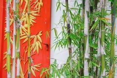 Bambus und Fenster Stockfotos