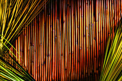 Bambus- und grünes Gras-Hintergrund Lizenzfreie Stockbilder