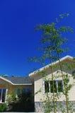 Bambus und Haus Lizenzfreies Stockfoto