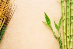 Bambus- und natürliches Gras-östlicher Dekor-Hintergrund Lizenzfreies Stockbild