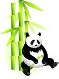 Bambus und Panda lizenzfreie abbildung