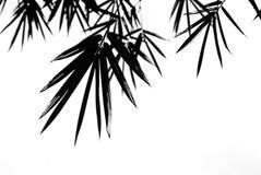 Bambus verlässt Schattenbild-Hintergrund Stockfotos