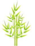bambus wiązka Zdjęcie Stock