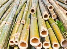 Bambus wurde geschnitten lizenzfreie stockfotografie