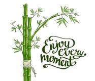 Bambus zieleń Cieszy się każdy moment kartę ilustracja wektor