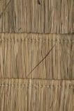 Bambusa dach Zdjęcie Stock