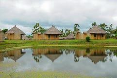bambusa dom obraz royalty free