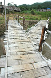 Bambusa Gałąź Most Obrazy Royalty Free