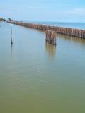 bambusa ogrodzenia rząd Fotografia Royalty Free