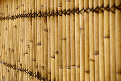 Bambusa ogrodzenie Zdjęcie Royalty Free