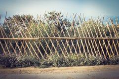 Bambusa ogrodzenie 3 Zdjęcie Royalty Free