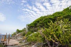 Bambusa ogrodzenie na falezie przy Koh Sichang, Chonburi, Tajlandia Zdjęcia Royalty Free