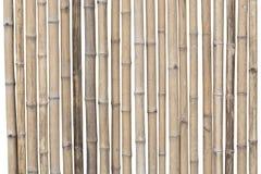 Bambusa ogrodzenie odizolowywający na białym tle Ścinek ścieżka obrazy royalty free