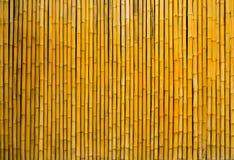 Bambusa płotowy tło Obraz Stock