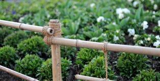 bambusa płot Zdjęcia Royalty Free