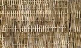 bambusa płot Obrazy Royalty Free