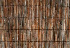 bambusa płot Obraz Royalty Free
