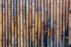Bambusa płotowy tło Zdjęcie Stock