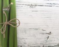 Bambusbadekurort Lizenzfreies Stockfoto