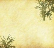 Bambusblätter auf altem grunge Antikepapier Stockfotos