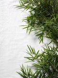 Bambusblätter und ein weißes Tuch für Massage Stockbild