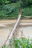Bambusbrücke über Fluss Lizenzfreies Stockbild