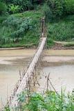 Bambusbrücke über Fluss Stockfotografie