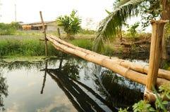 Bambusbrücke Stockbilder