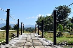 Bambusbrücke auf grüner Natur Lizenzfreie Stockfotos
