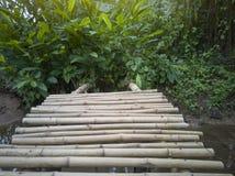 Bambusbrücke für die Kreuzung von kleinen Kanälen lizenzfreies stockbild