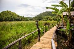 Bambusbrücke zum Haus Stockbild