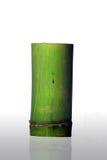 Bambuscup Stockbild