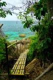 Bambusfußweg lizenzfreies stockfoto
