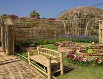 Bambusgarten Stockbilder