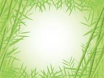Bambushintergrund vektor abbildung