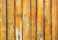 Bambushintergrund Stockbild