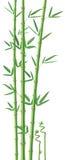 Bambusillustration Lizenzfreies Stockbild