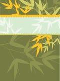 Bambuskarten-Serie - Grün Lizenzfreie Stockfotos