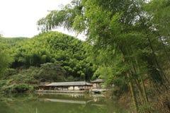 Bambuskog i det Anhui landskapet, Kina Royaltyfria Bilder