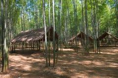 Bambuskog och träpaviljonger Royaltyfria Bilder